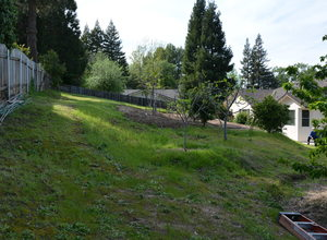 6122 Grant Avenue , Laporte, VA, 20122 Listing: Back Yard Photo by Real Estate Agent